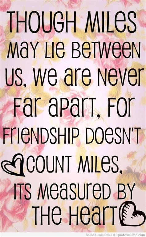 Top 30 Best Friend Quotes | Quotes and Humor | Friend ...