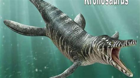 top 5 de los monstruos acuaticos mas grandes de toda la ...