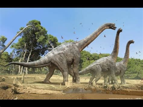 Top 7 the largest dinosaurs in history | Larger Dinosaurs ...