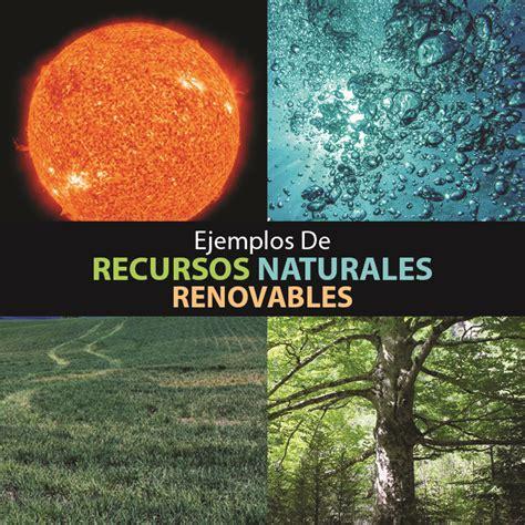 Top ejemplos de recursos renovables   Mente y Cuerpo Sano