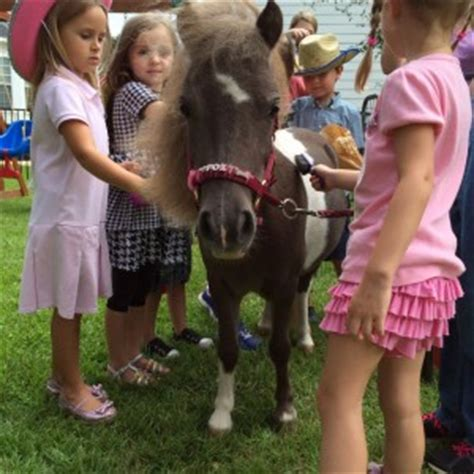 Top Petting Zoos for Hire in Tallahassee, FL  100% ...