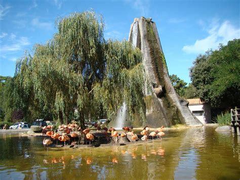 Tourisme Zoo de la Palmyre   Tourisme en Charente Maritime ...