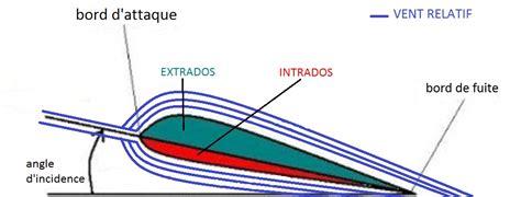 TPE Wingsuit: TPE : Wingsuit s inspire du vivant || 1ere S