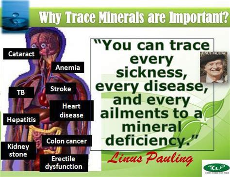Trace Mineral Drops   ONLINE HEALTHY LIVING
