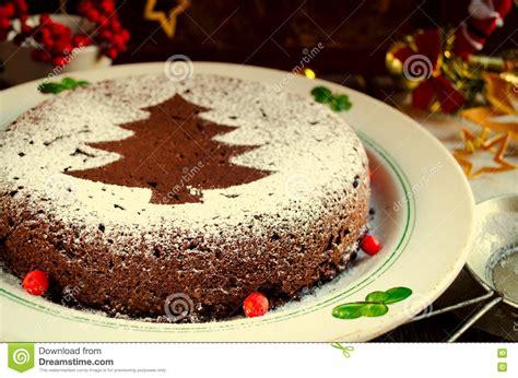 Traditional Homemade Chocolate Christmas Cake Sprinkled ...