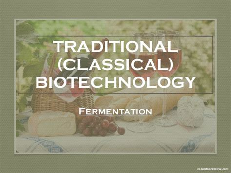 Traditional versus Modern Biotechnology  Exam 2 coverage
