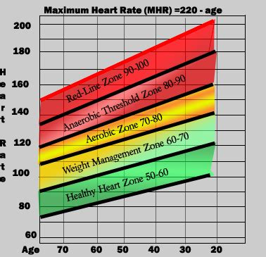 Training Zone Heart Rate   Online Collages MBA Masters ...