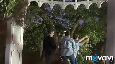 Traslado 2019 Virgen del Rocío a Almonte   YouTube
