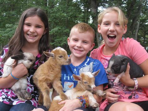 Traveling Petting Zoo & Farm Animals for Parties in Boston ...