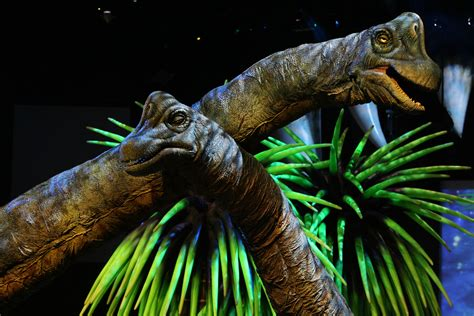 Trees of the Jurassic age | Sand Prints