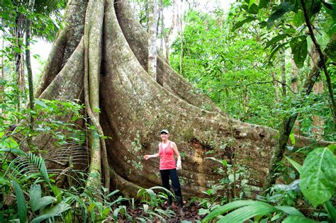 Trekking in the Amazon Rainforest   Earth Trekkers