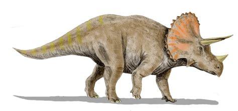 Triceratops – Wikipedia, wolna encyklopedia