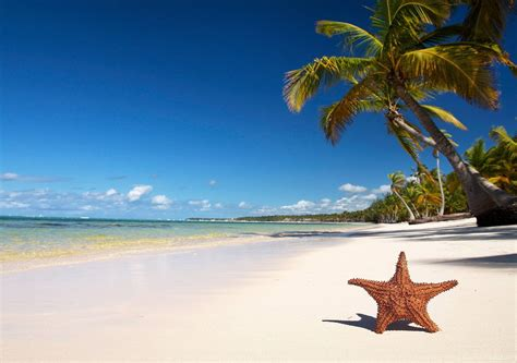 Tropical Beach Tourism Images, Photos & HD Wallpapers ...