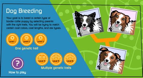 Try these breeding games!   The Institute of Canine Biology