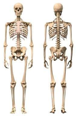 Tumores óseos malignos  cáncer de huesos