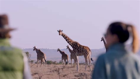 Turismo en Kenia 2019: opiniones, consejos e información ...