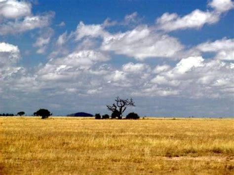 Turismo en Kenia   Vivir en el Mundo