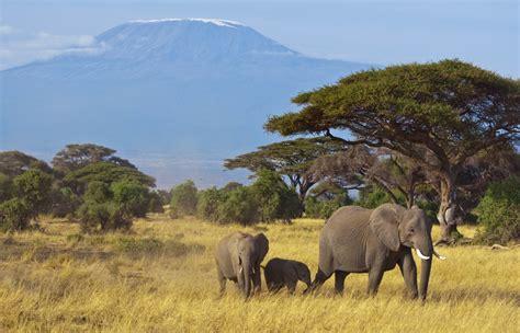 Turismo sostenible Kenia   Taranna Viajes | Turismo ...