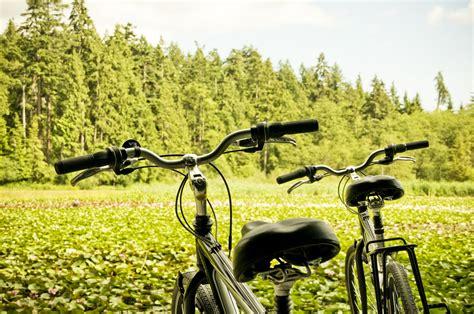 Turismo verde: ¿qué es y cuáles son sus ventajas ...
