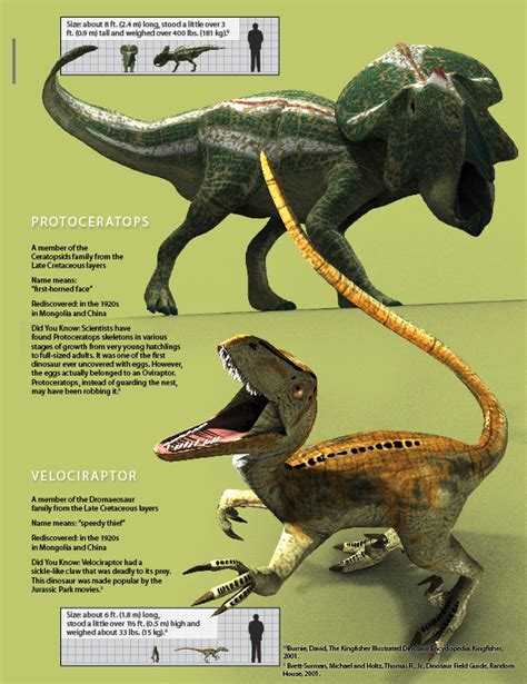 Two Fighting Dinosaurs?   Answers in Genesis