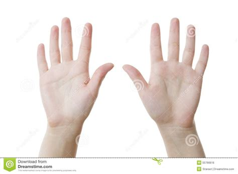 Two Open Empty Hands With Palms Up. Stock Photography ...
