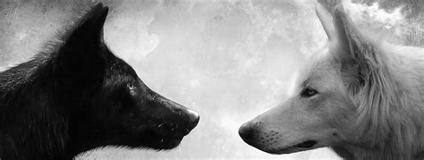 Two Wolves | Thoughts of Ascent