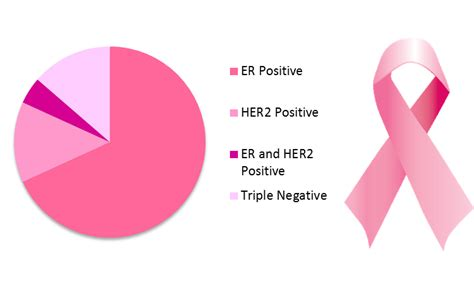 Types of Breast Cancer   Scoop on Cancer