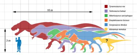 Tyrannosauridae | Wiki Prehistórico | FANDOM powered by Wikia