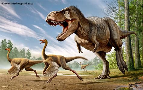 Tyrannosaurus rex and Struthiomimus by Mohamad Haghani ...