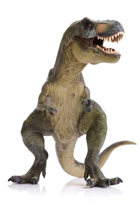 Tyrannosaurus Rex dinosaur stock image. Image of vertical ...