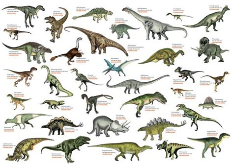 U.S. Dinosaur Challenge | Main Photo  Cover  … | Dinosaur ...