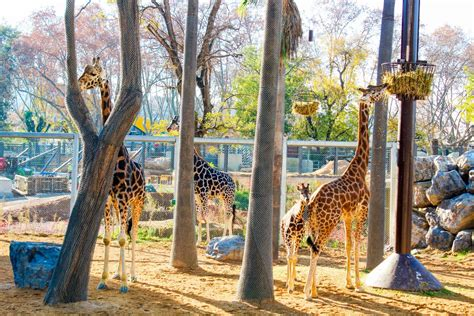 Ultimate Family Guide to Barcelona