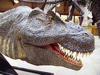 Un hombre compra un diente de dinosaurio por 56.250 ...
