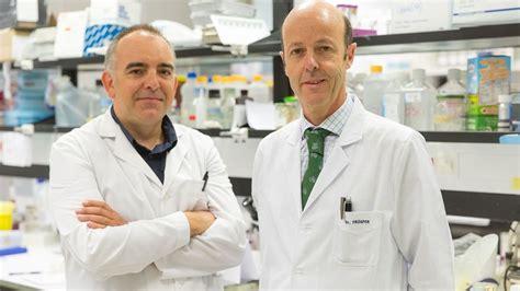 Un nuevo tratamiento logra eliminar el cáncer de vejiga en ...