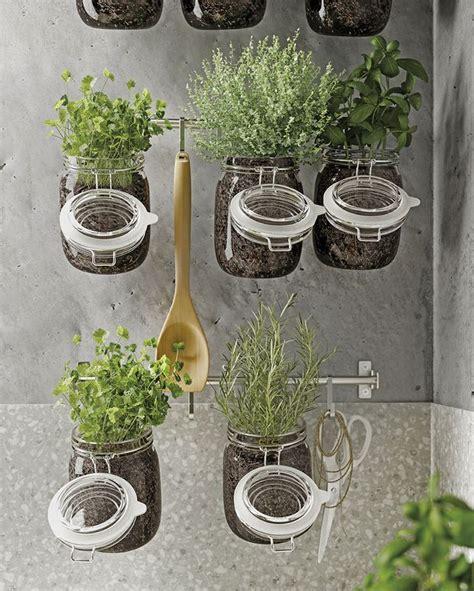Un pequeño huerto de aromáticas en la cocina | Decoración ...