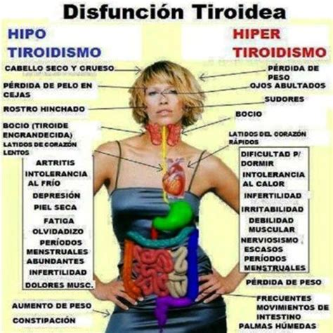Un sentimiento llamado amoR : Hipotiroidismo e Hipertiroidismo