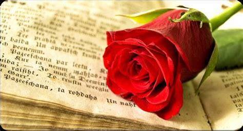 Un tercio de las rosas de Sant Jordi salen de Mercabarna