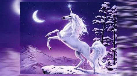 Un youtuber convirtió la imagen de un unicornio en una ...