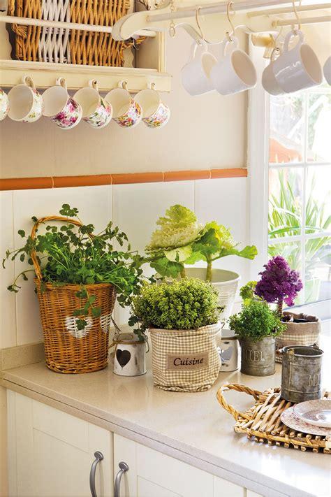 Una casa sana: plantas que limpian el aire y purifican el ...