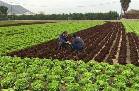Una iniciativa que reivindica la labor del agricultor ...