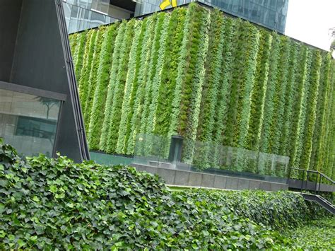 Una pared verde / El blog de El Marques!