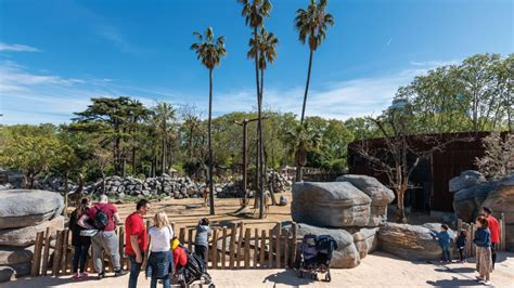 Una reanudación segura y llena de proyectos | Zoo Barcelona