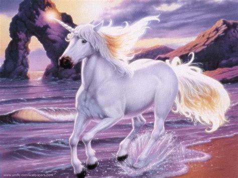 Unicorn   Unicorns Wallpaper  5591227    Fanpop