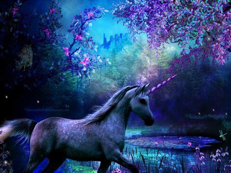 Unicorns:   – Juddmusic s Blog