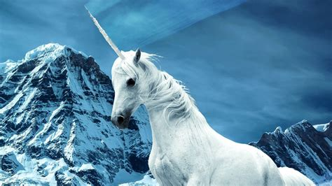 Unicorns were real, and there are fossils to prove it