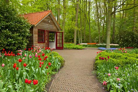 Unique Wallpaper: Plantas, flores y jardines exuberantes ...