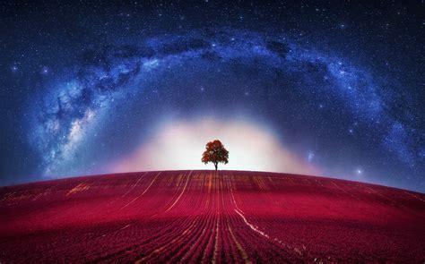 universe, Trees, Digital Art, Stars Wallpapers HD ...