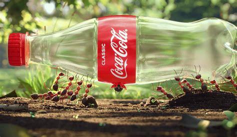 Unos insectos reciclan una botella de plástico en este ...