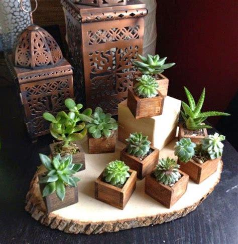 Urbanika Moda: Decorando con cactus y Suculentas ...