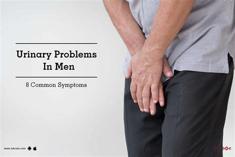 Urinary Problems In Men   8 Common Symptoms   By Dr. Prof ...